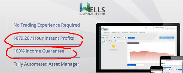 Wells Investments Scam