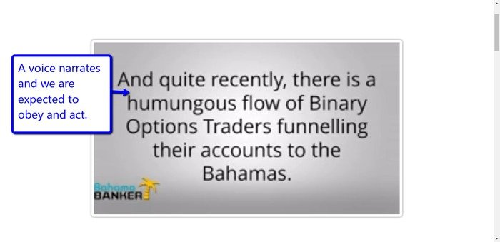 Bahama Banker Review